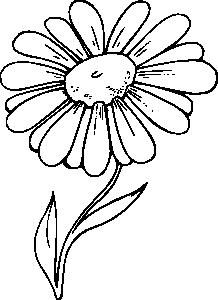 Ромашка цветок раскраска